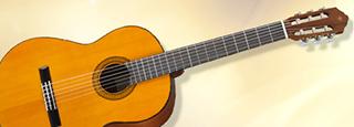 大人のギター